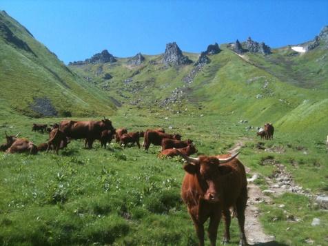 Traversée des Volcans d'Auvergne
