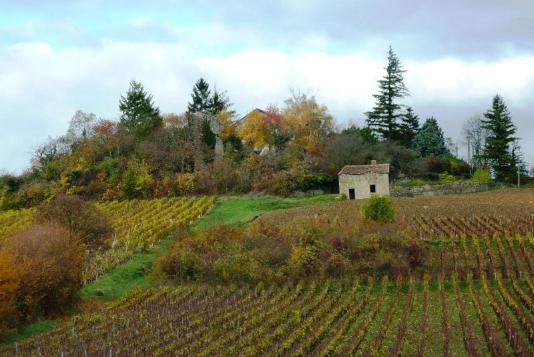 Chemins de Compostelle : Beaune - Cluny