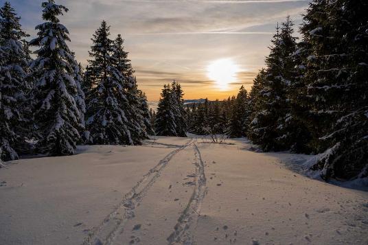 Glisse dans le Haut Jura
