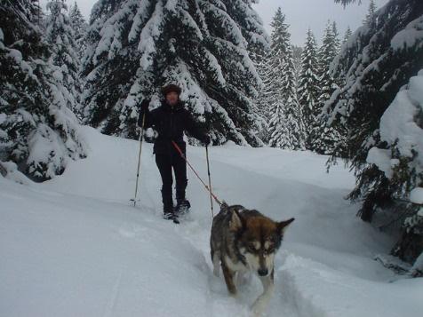 Haute Route du Jura avec les Chiens Polaires