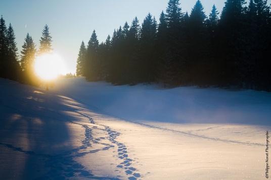 WE Réveillon 2021 sur les Crêtes du Jura