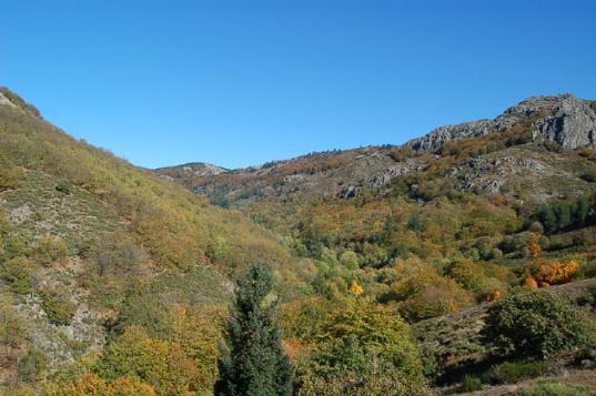 Caroux - Terres Sauvages